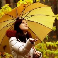 Зонт-трость: особенности выбора