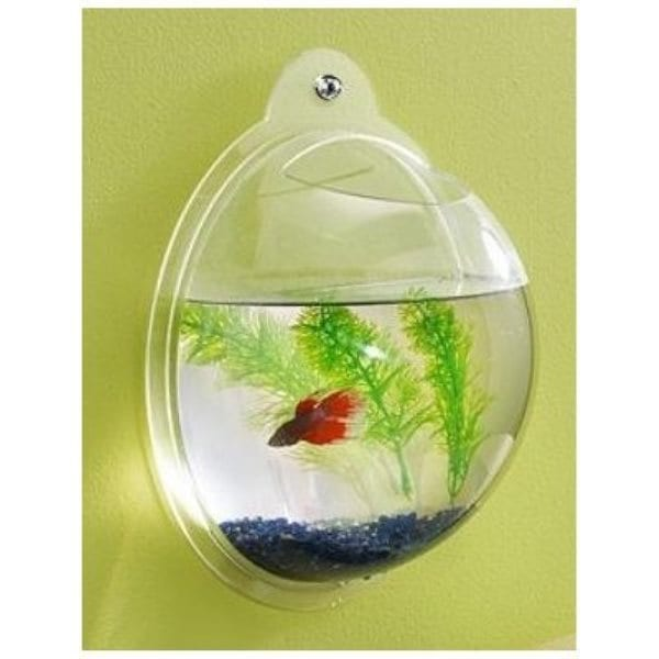 Необычная форма аквариума