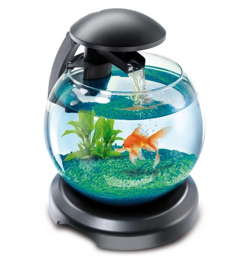 Комфортные условия для рыбок