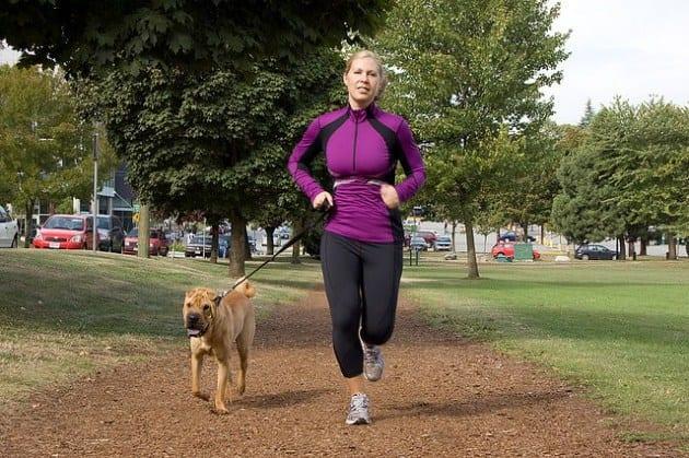 Выгуливание собаки полезно для здоровья